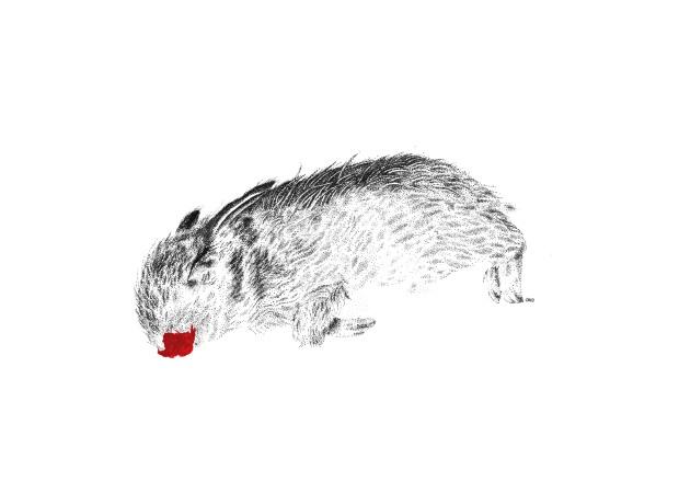 pendrawing_bunny