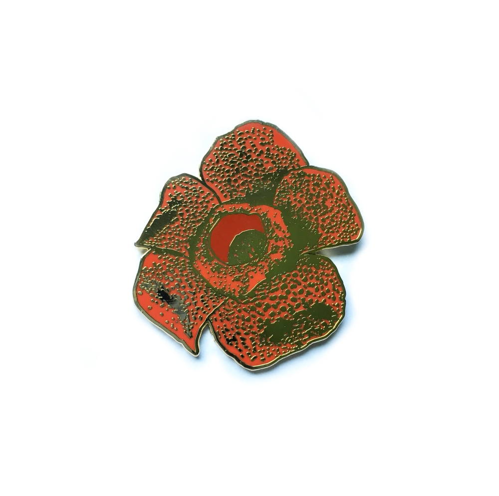 pin_rafflesia