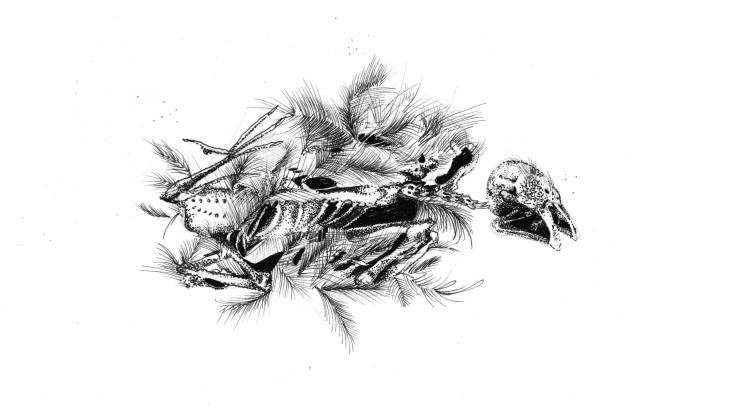 sticker_decayed bird